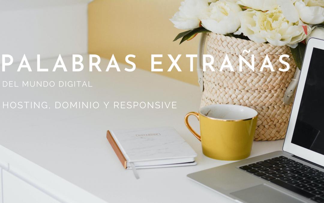 Palabras extrañas del mundo online – Responsive, Hosting y Dominio